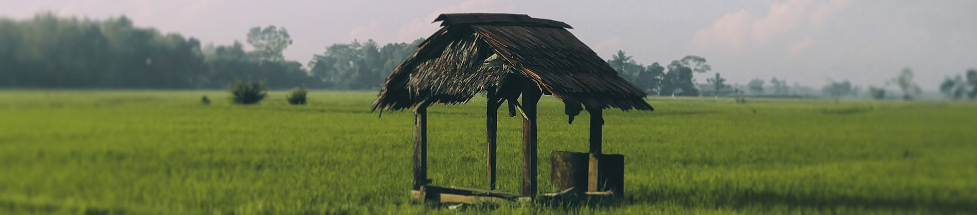 A man-made wooden well in the middle of a field