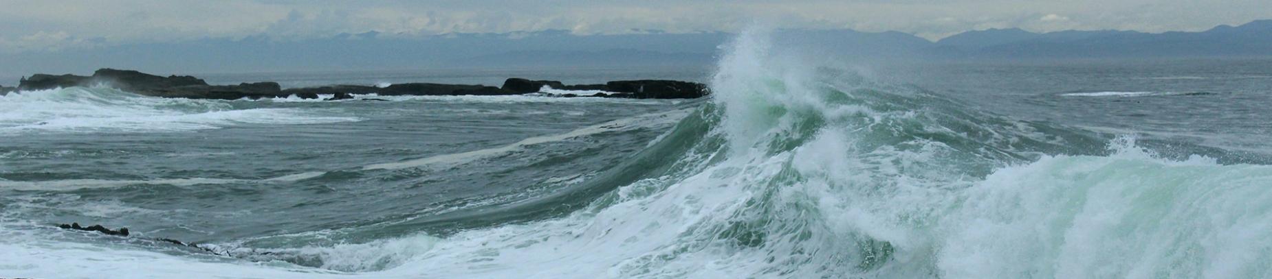 A wave crashing into the shore