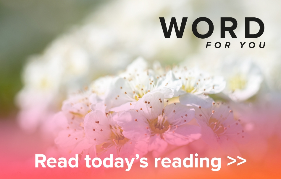 UCB Word For You - Read today's reading